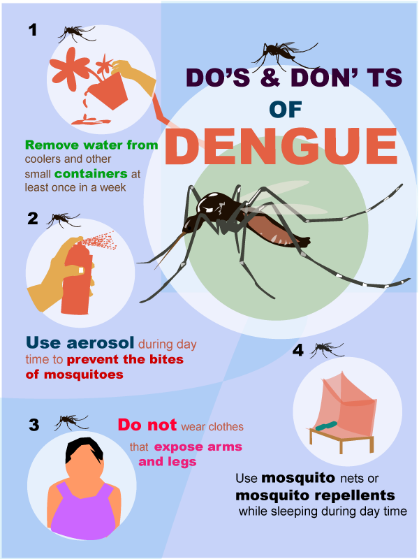prevent sp dengue fever essay